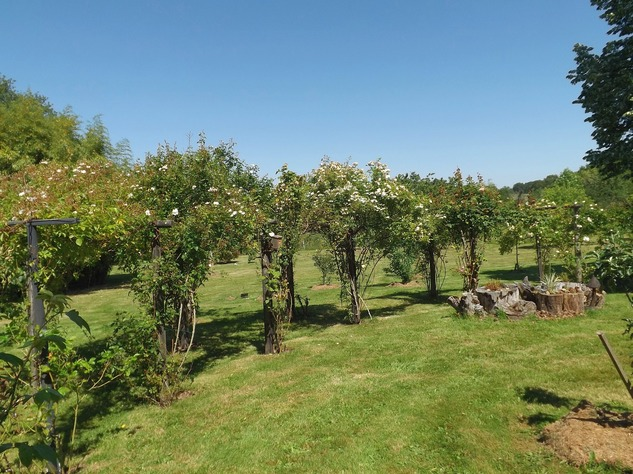La Brenne, Indre 36, near Prissac: very pleasant one-level house with land 13120