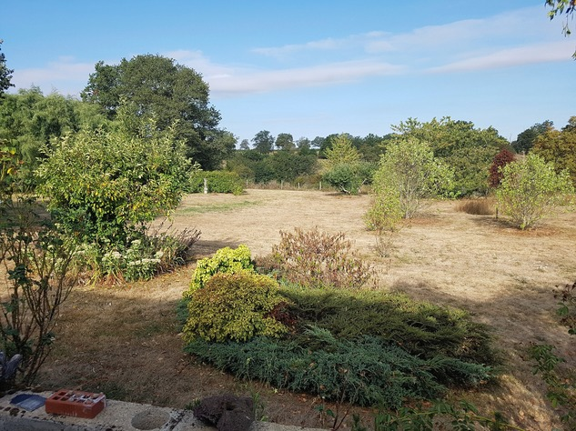 La Brenne, Indre 36, near Prissac: very pleasant one-level house with land 13121
