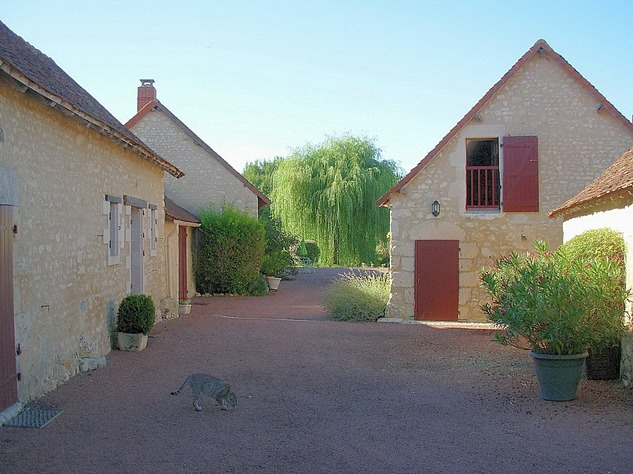 Near Angles sur l'Anglin, Vienne 86: property with swimming pool 13565