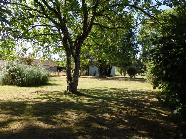 Country Farmhouse with Barn, Bread Oven, Gardens, Orchard, and In-Ground Swimming Pool 7870
