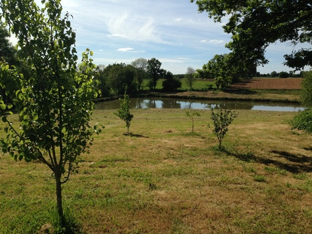 Private 3 Bed Barn Conversion, with 5.2 Acres including Lake  (Gîte/B & B Potential ) 8575