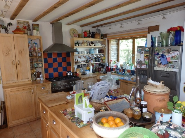Private Smallholding (2Ha) with Swimming Pool - Business Opportunities Here! 10343