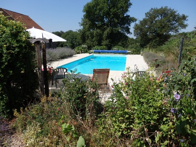 Private Smallholding (2Ha) with Swimming Pool - Business Opportunities Here! 10331