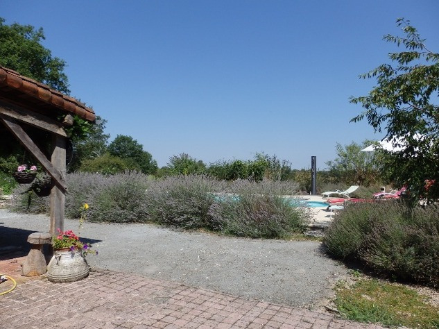 Private Smallholding (2Ha) with Swimming Pool - Business Opportunities Here! 10357