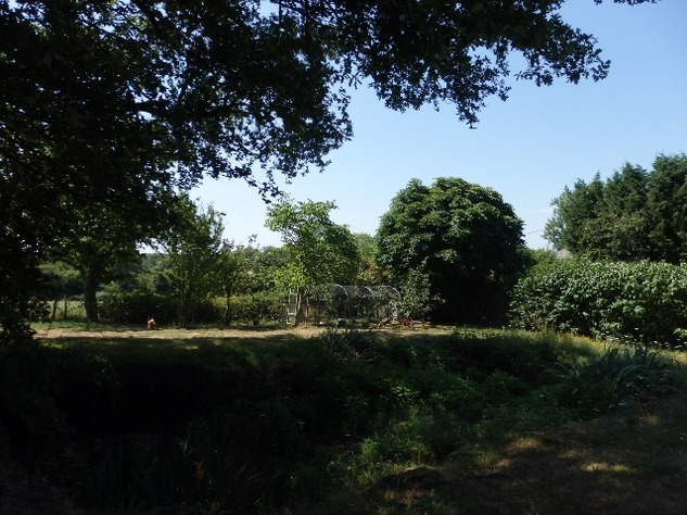 Private Smallholding (2Ha) with Swimming Pool - Business Opportunities Here! 10361