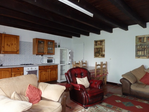 Great House in a Small Hamlet Close to L'Isle Jourdain 10296