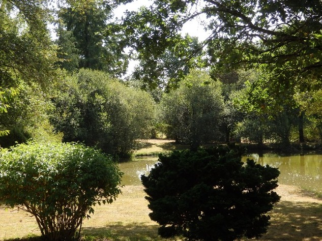 Breath-Taking Private Lake with 3 Bedroom House and Gîte Opportunity - Near St Junien 10582
