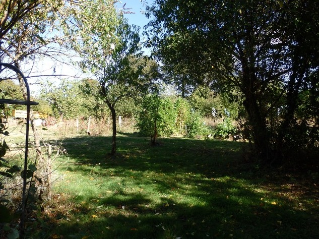 Farm - 11 Acres - House/Barns - Gîte Potential - 2 Wells/Pond 10710