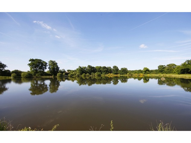 Prestige Carp Fishing Business – 36 Acres of Land – (11 Acres of Lakes) – 4 Outstanding Properties 10862