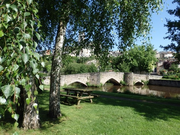 Perfect House in Bellac's Beautiful Park on the River - Haute Vienne 12314