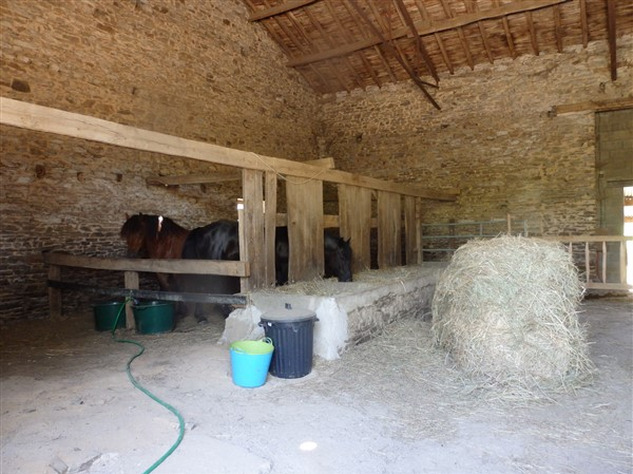 Equestrian Property near Bussière-Poitevine in the Haute Vienne 14458