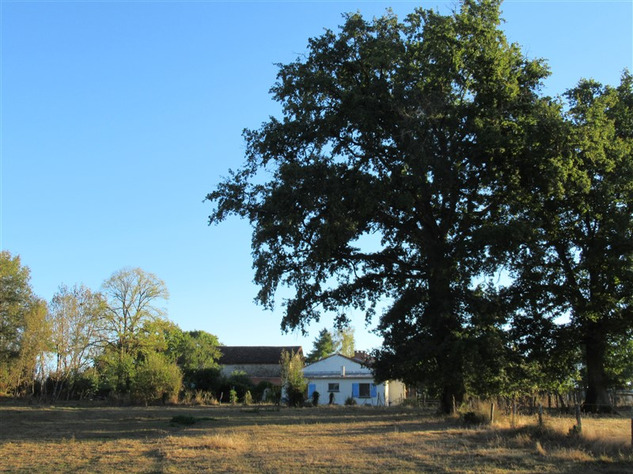 Equestrian Property near Bussière-Poitevine in the Haute Vienne 14600