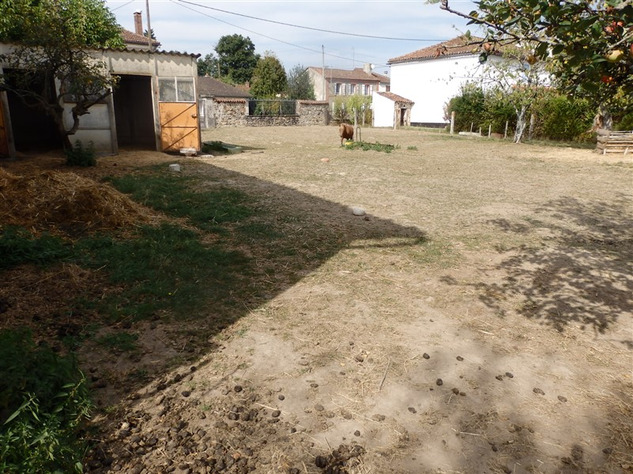 For Sale Equestrian Home near Bellac in the Haute Vienne 14677