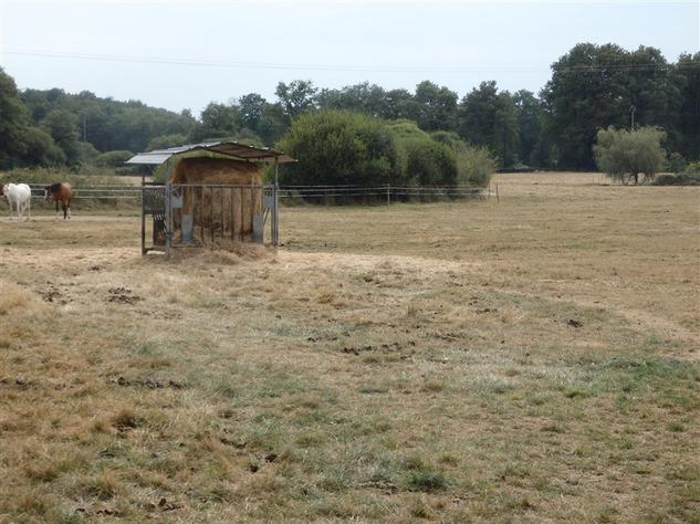 For Sale Equestrian Home near Bellac in the Haute Vienne 14678